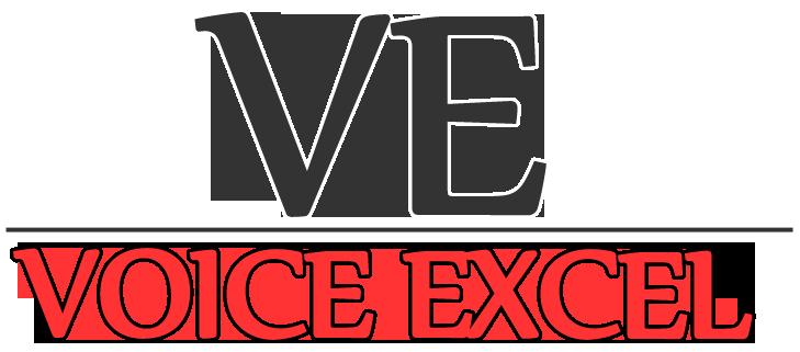 Voice Excel